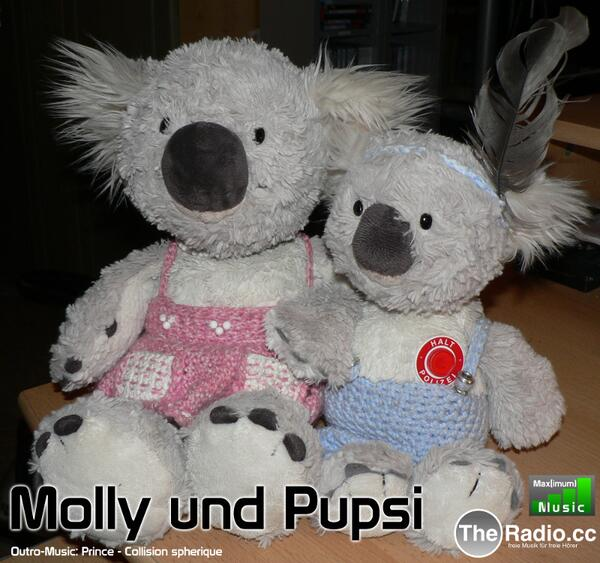 molly-pupsi-audioboo-800x751