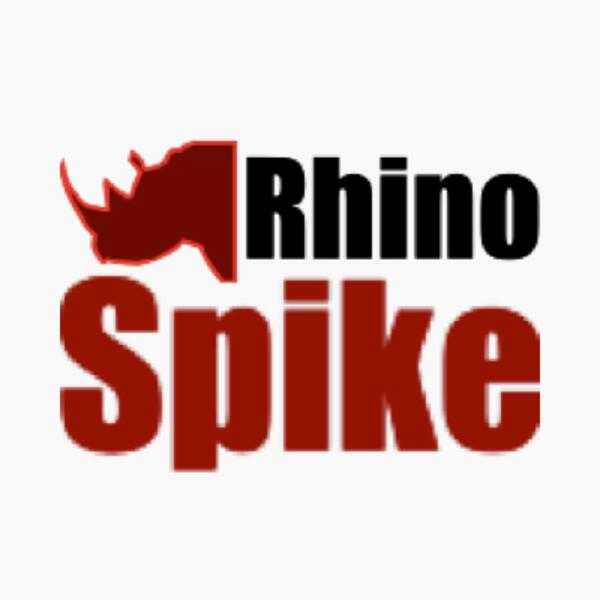 rhinospike album artwork