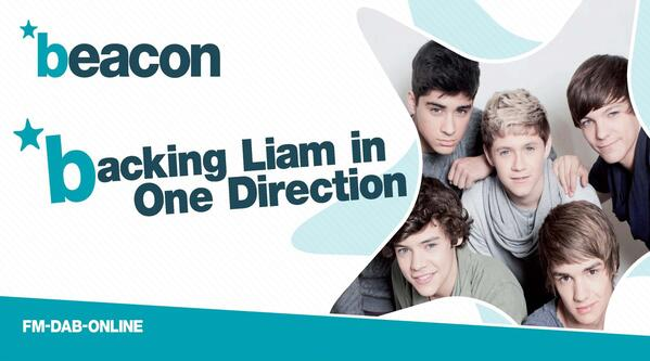 OneDirectionBanner1000x500mm