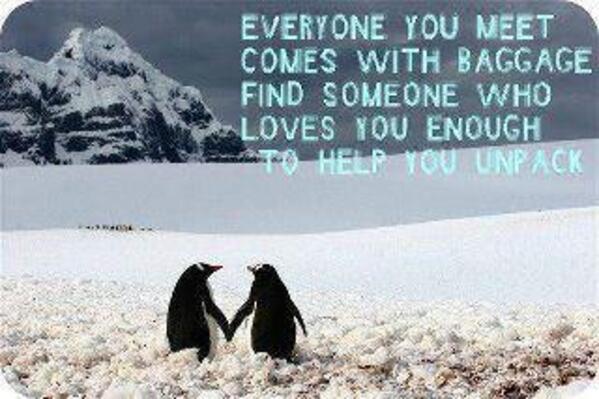 penguin and love