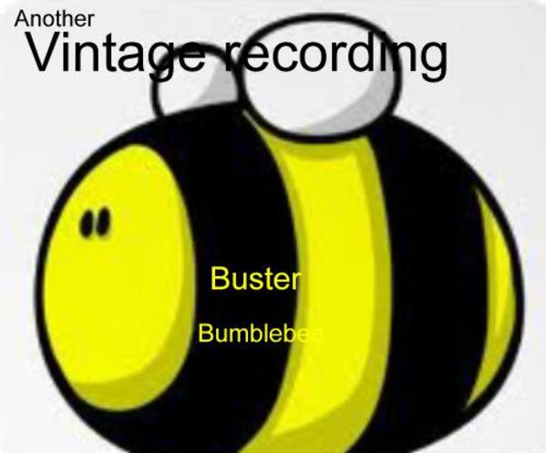 BusterBumblebee2