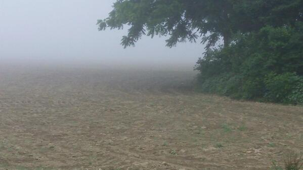 MorningFog 06202012
