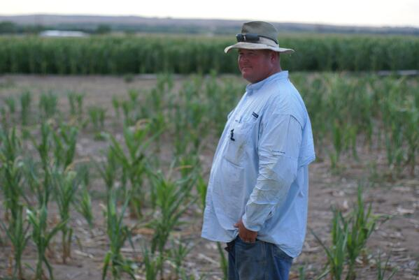 Andy DeVries Farmer in Ogallala Nebraska in a field of dry-land corn that failed because of drought