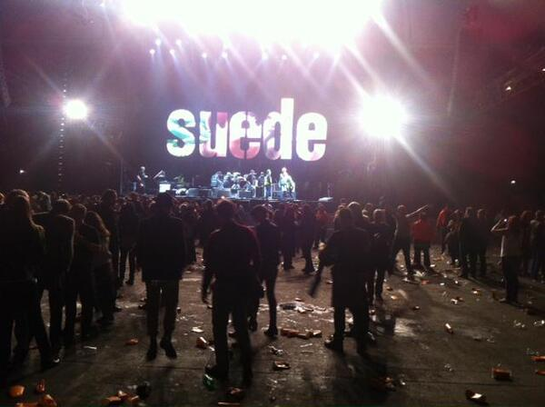 suede live