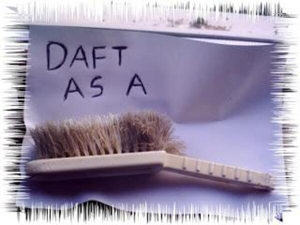 Daft as a brush 008