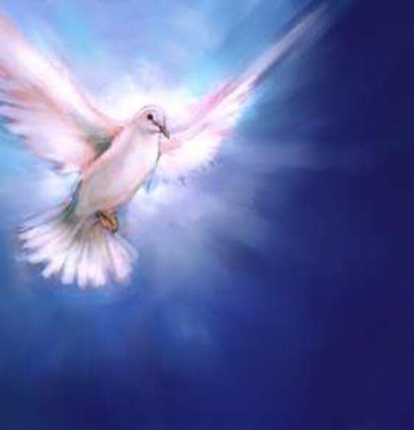 dove-holy-spirit