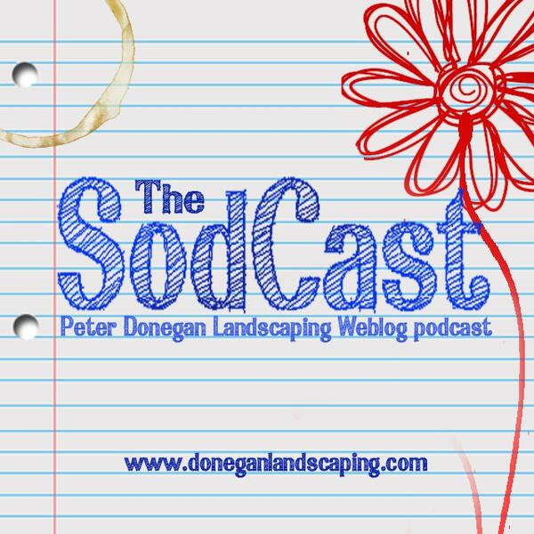 sodcast logo