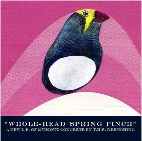 Whole-Head Spring Finch projected cover