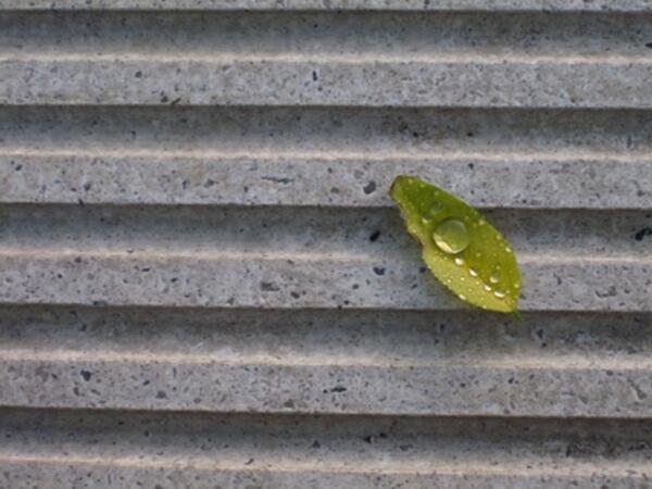 drop IMG 5300