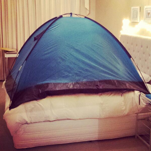 mouse tent