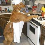 thek9cookbook