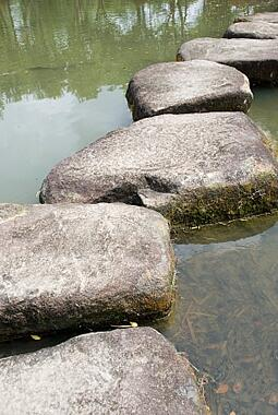 steppping stones2