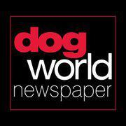 Dogworldnews