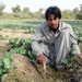 Poor farmers unlike rich - face uphill battle with Pakistan s climate extremes
