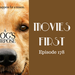 Movies First Ep 178 A Dog s Purpose AB HQ