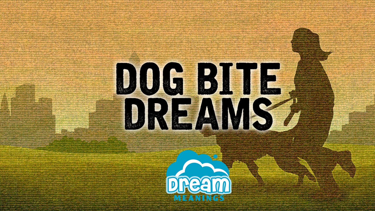 Dog Bite Dreams | Dream Meanings Podcast