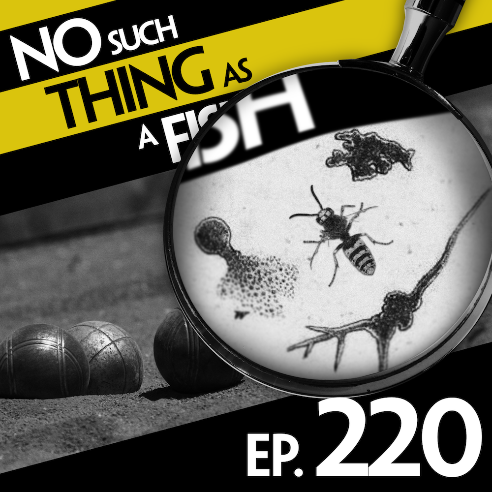 Episode 220: No Such Thing As A Million Dots