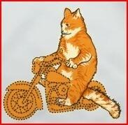 kitty bike