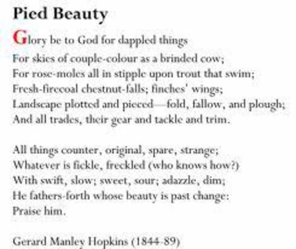 pied beauty essay questions Pied Beauty