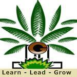 Learn-Lead-Grow