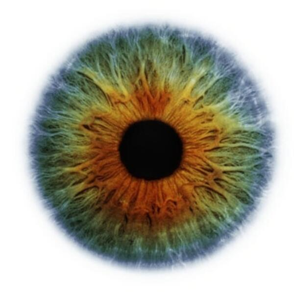 Eye Scapes - 01